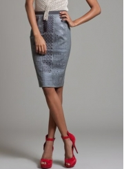 Silver Embroidered Pencil Skirt